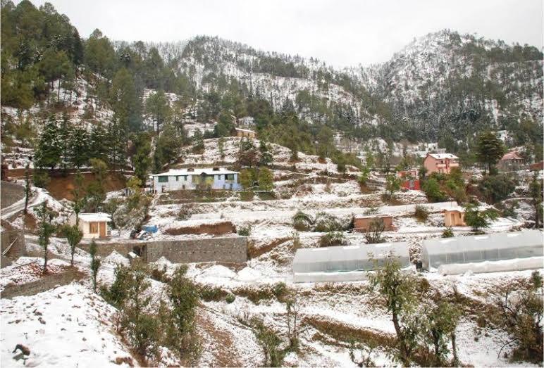 Bhowali