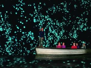 glowworms-cave-23623-crop