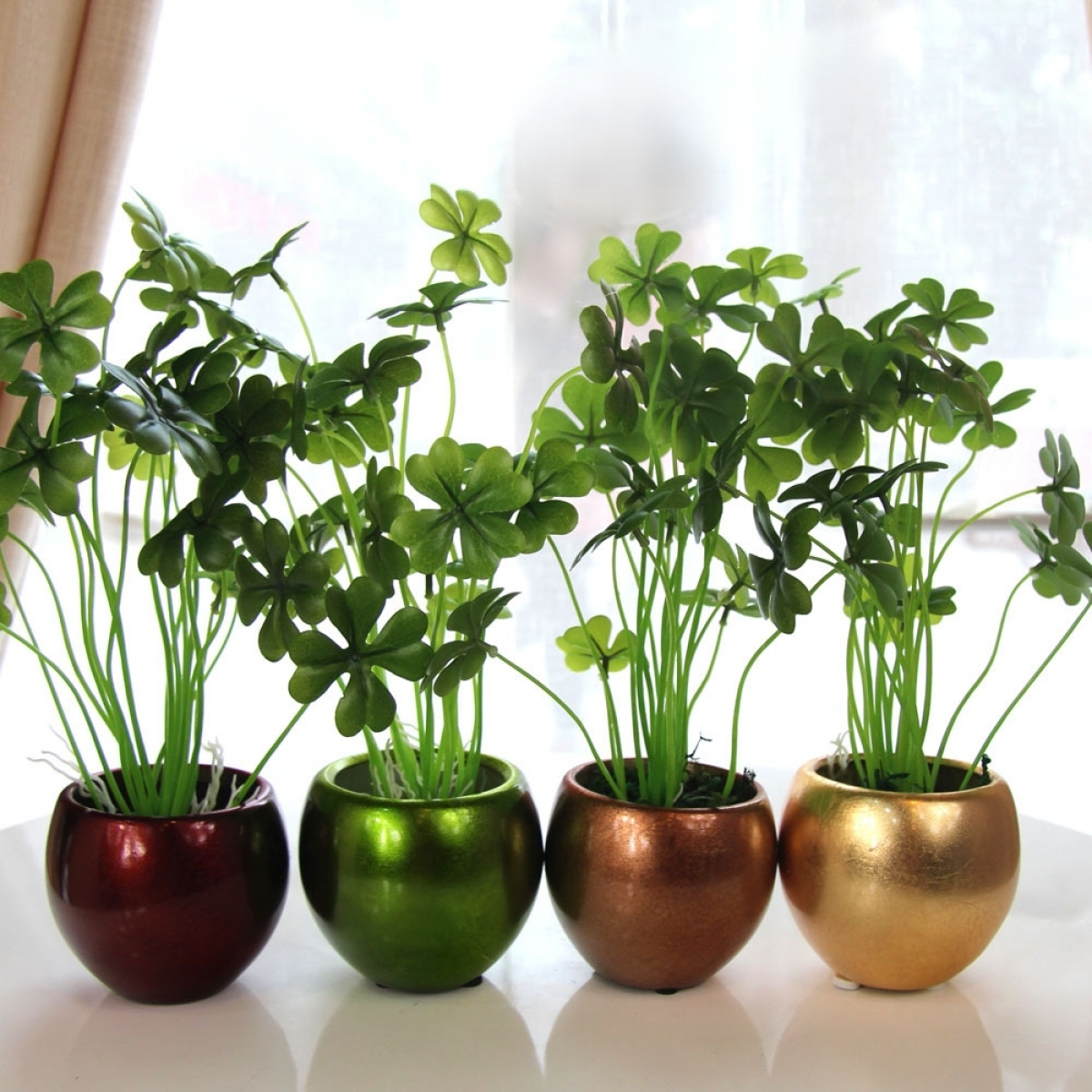 Plants always look good and fill space in an empty room. If you are ...