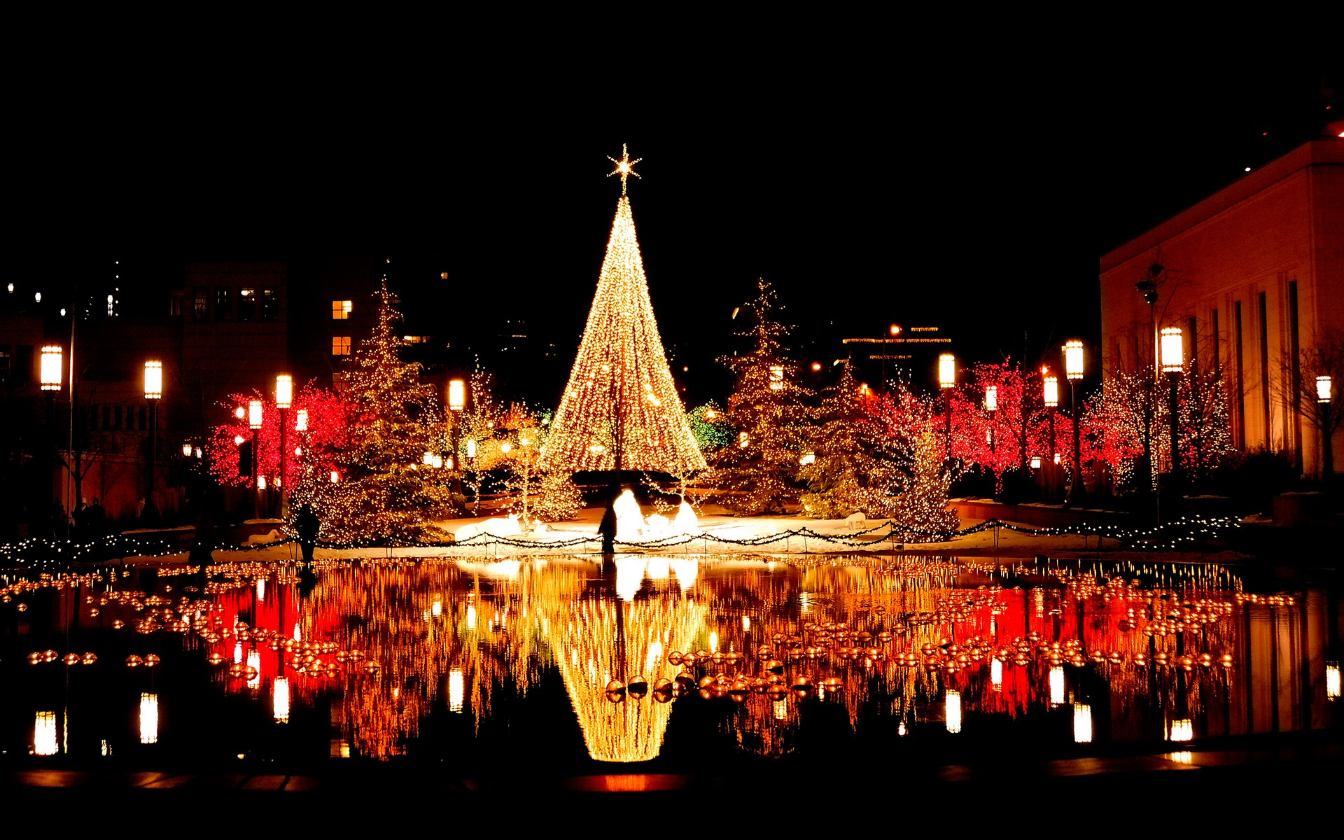 Five places in India where you can celebrate your Christmas this ...