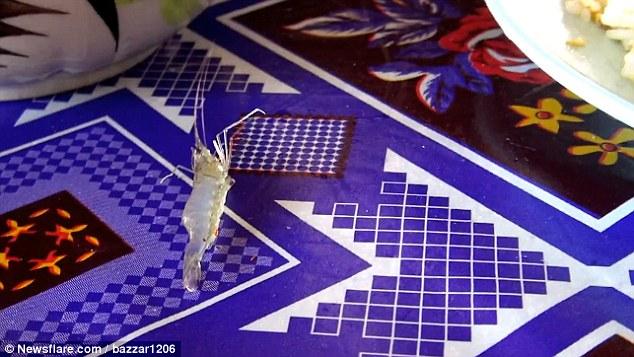 British couple, Cambodia, shrimp