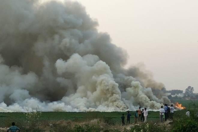 Bellandur lake, Bengaluru, fire, garbage strewn, Karnataka,