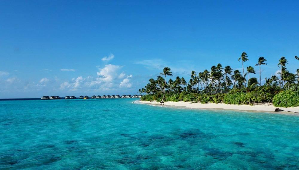big_interlax-maldivi-1_14816417321011