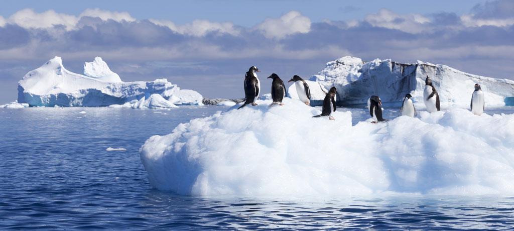 classic-antarctica-a