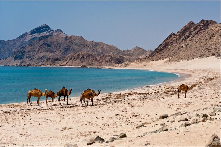 dhofar-east-beach-1