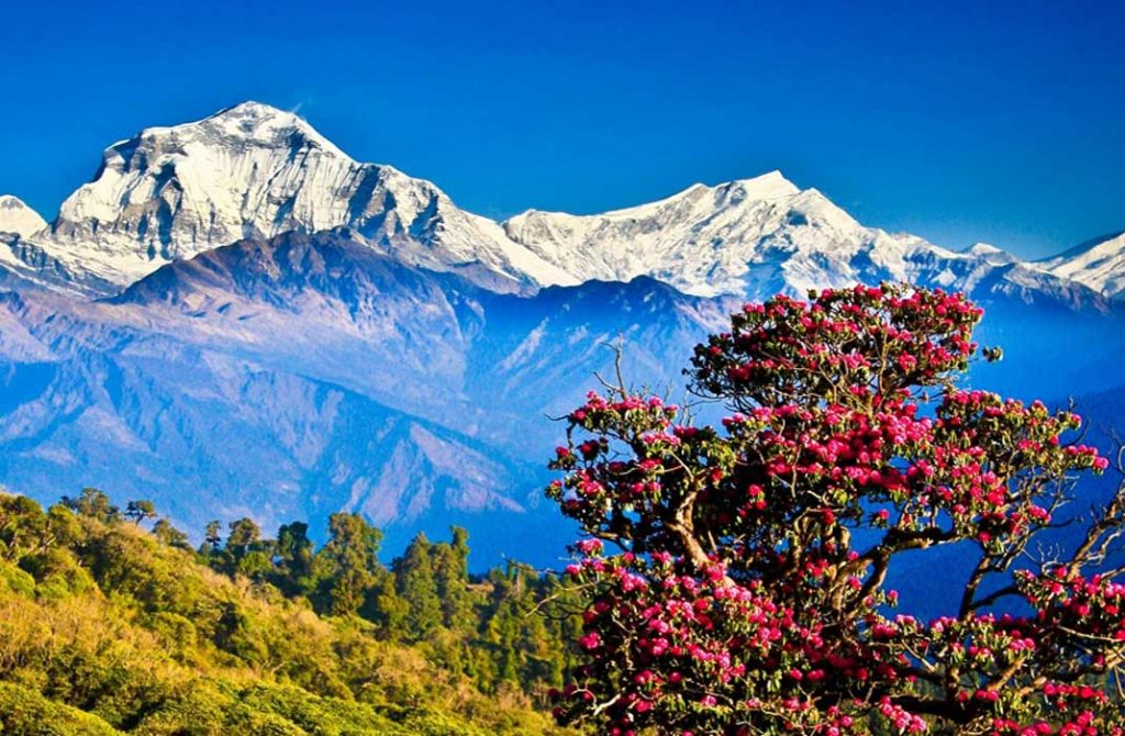 explore-himalayan-kingdom-bhutan
