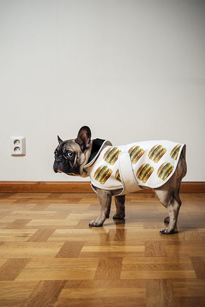 Dog with Big Mac clothes.