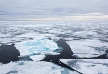 Arctic Ocean, Arctic strategy, dramatic physical changes, India