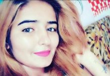 Panipat, Brother-in-law, Haryana singer, admit, murder, Harshita Dahiya, NewsMobile, Mobile News, India