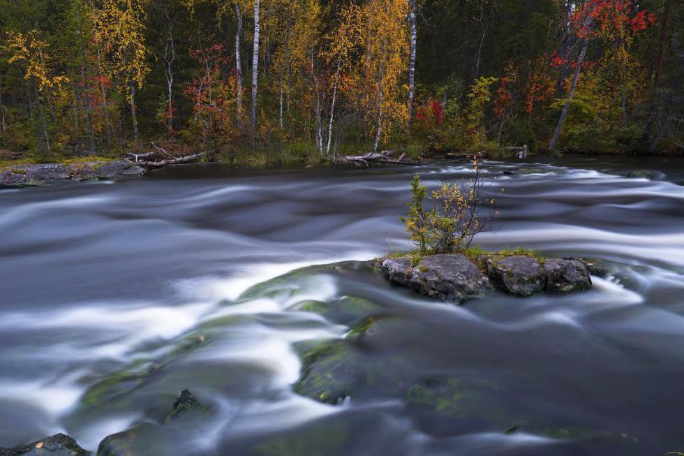 karelian_river