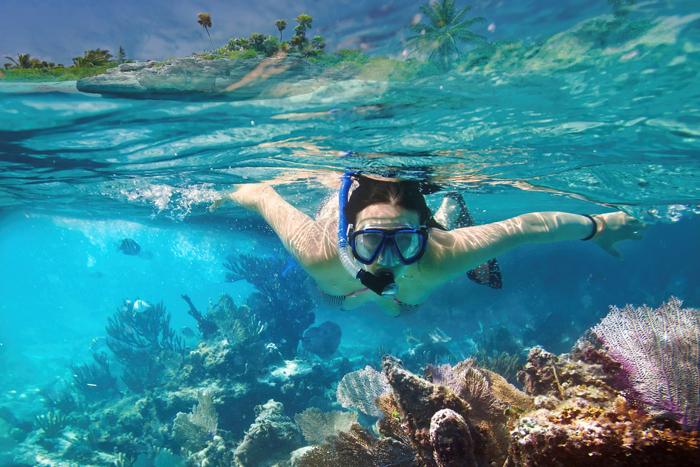 Snorkeling in Carribean sea