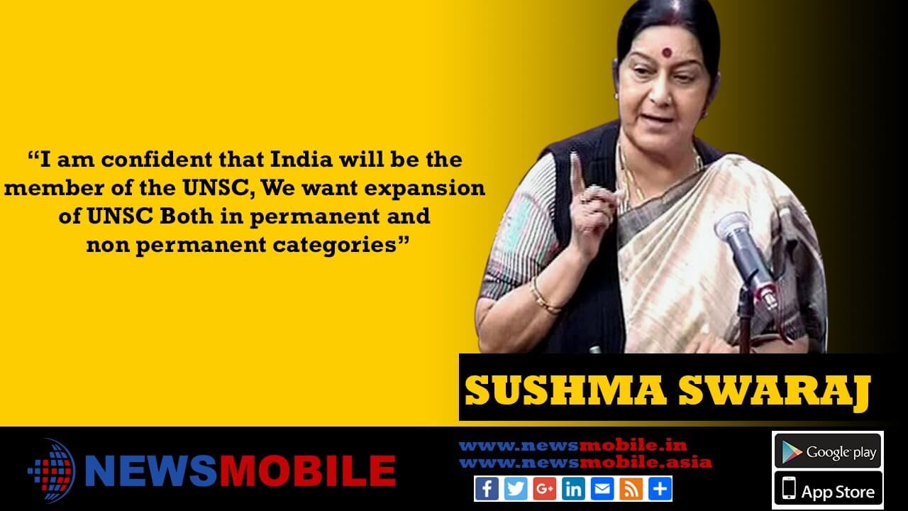 Rajya Sabha, External Affairs Minister, Sushma Swaraj, UN Security Council, India