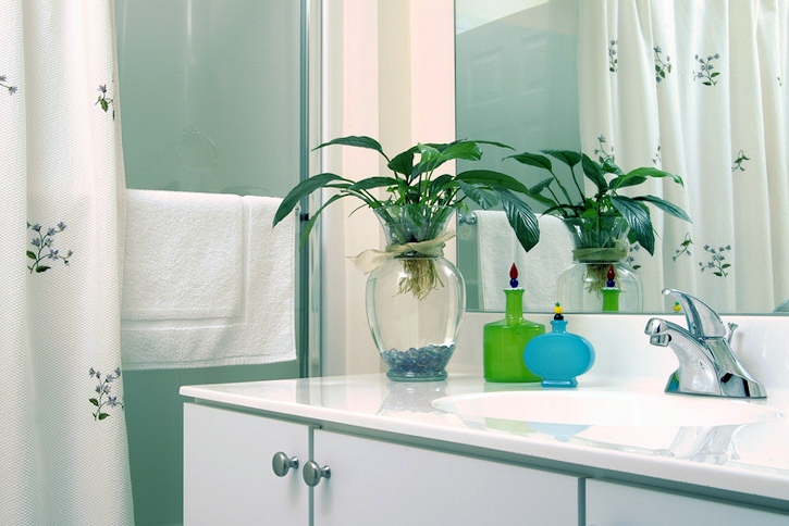 houseplants-in-bathroom-to-filter-toxins-from-air