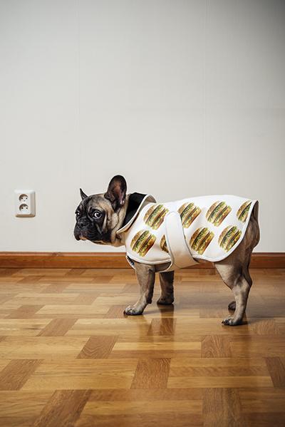 Dog with Big Mac clothes.